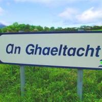 Czas zacząć uczyć się Irish Gaelic?
