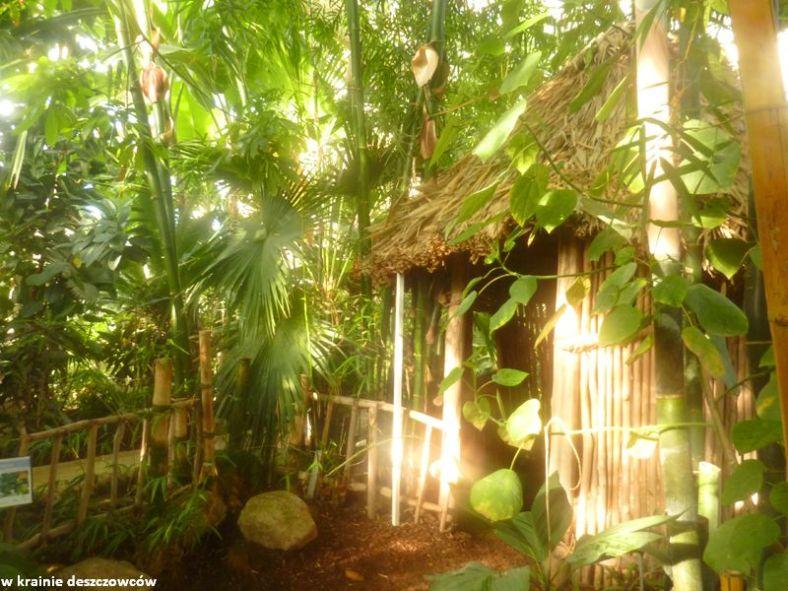 Botanic Gardens Glasnevin (2)