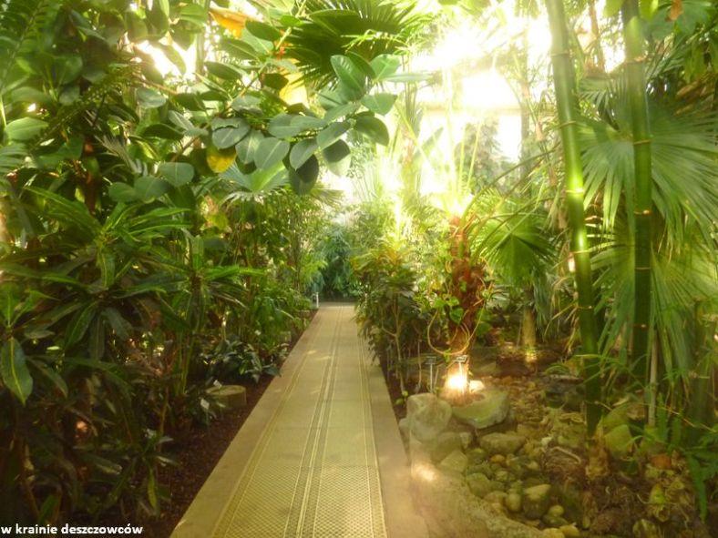 Botanic Gardens Glasnevin (3)