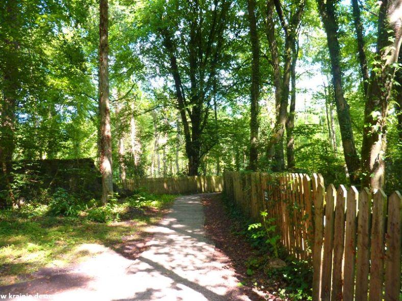 oak park forest park (2)