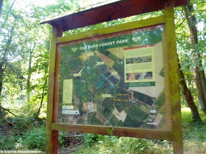oak park forest park (3)