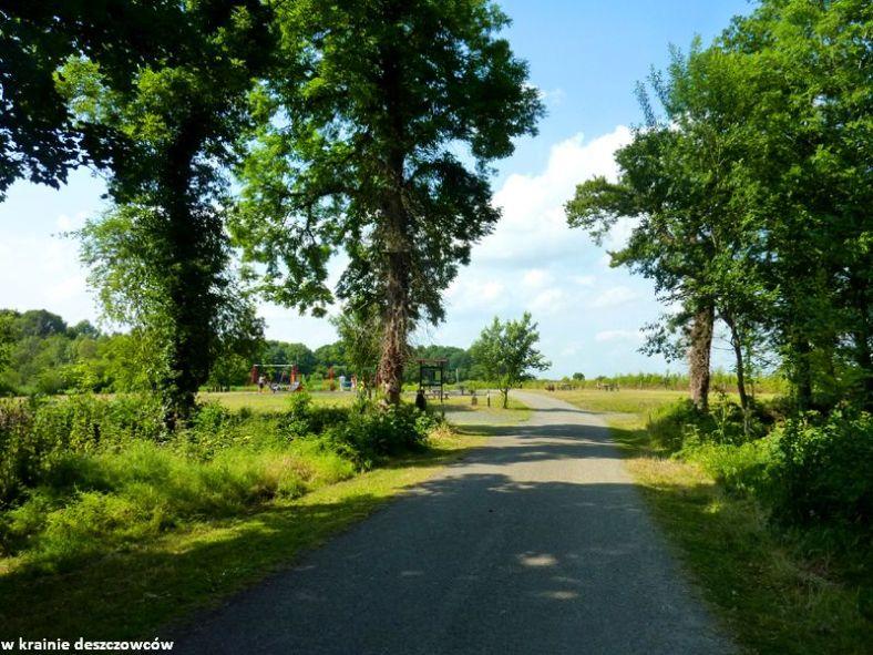 oak park forest park (5)