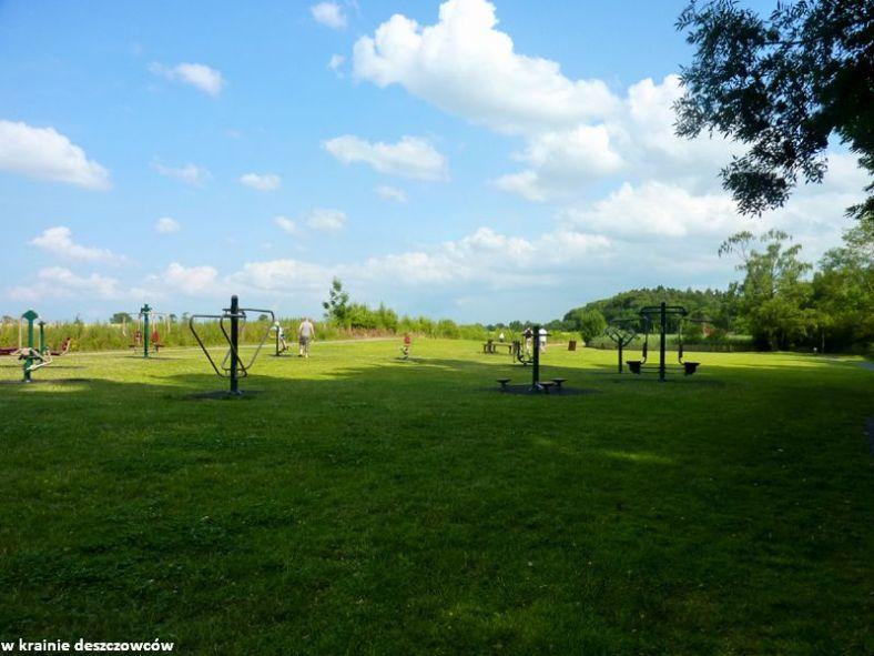 oak park forest park (9)