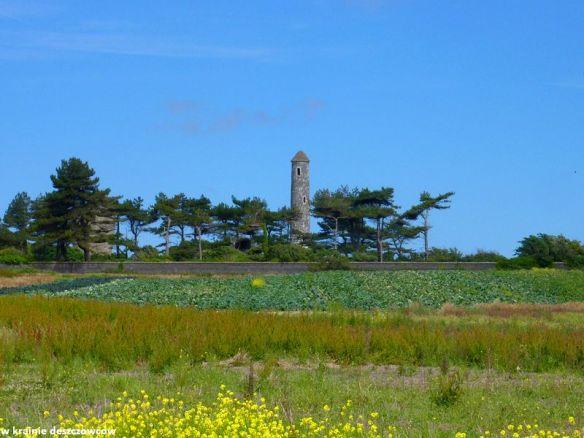 portrane round tower (2)