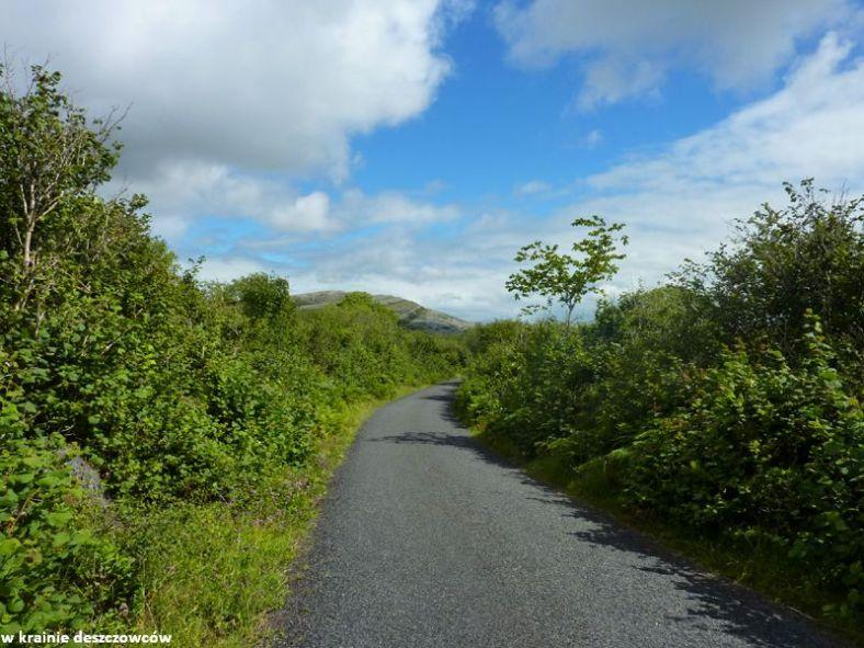Mullaghmore Loop, Burren (3)