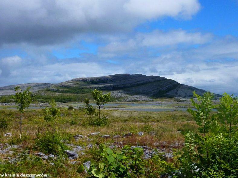 Mullaghmore Loop, Burren (4)