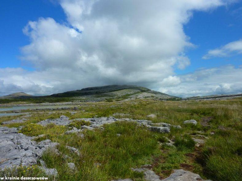 Mullaghmore Loop, Burren (8)