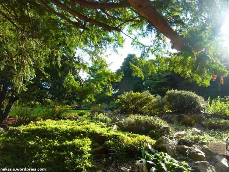 national botanic gardens (12)