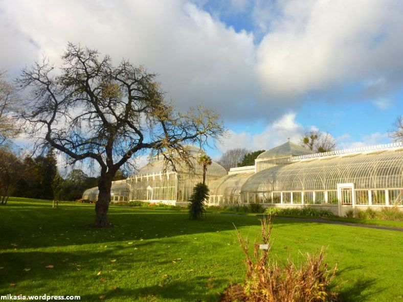 national botanic gardens (3)