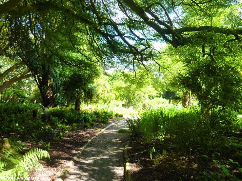 altamont gardens (1)