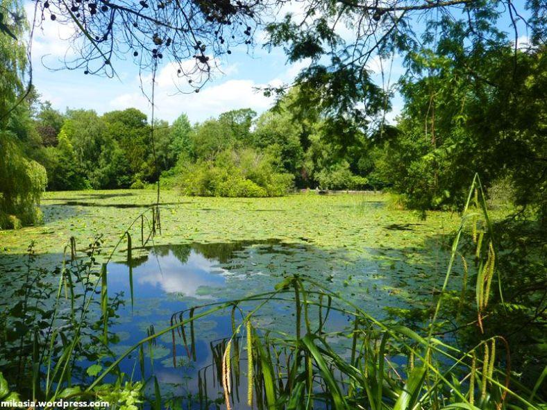 altamont gardens (2)