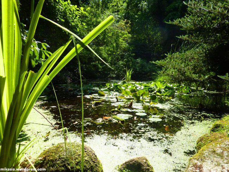 altamont gardens (3)