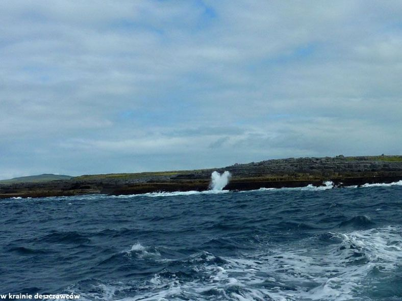 w drodze na inisheer i cliffs of Moher (7)