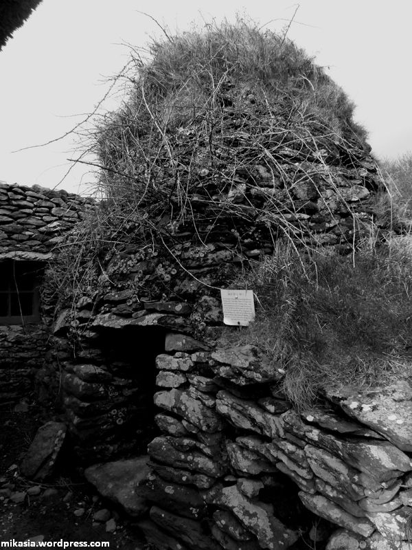 Famine Cottage (3)