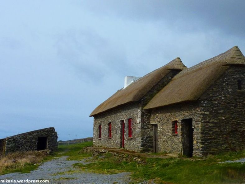 Famine Cottage (4)
