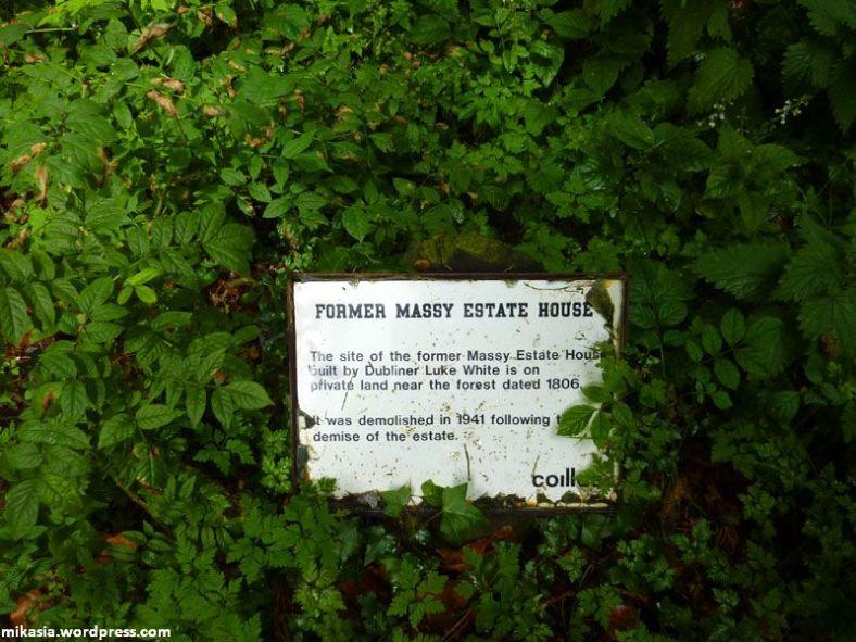 massey's woods (2)