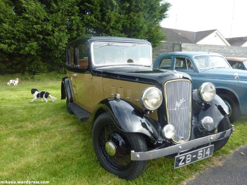 vintage cars (7)