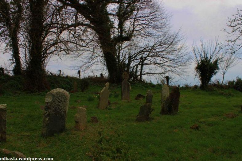 Tintern Abbey (10)