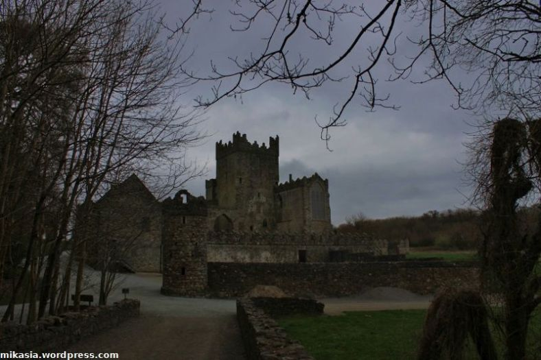 Tintern Abbey (17)