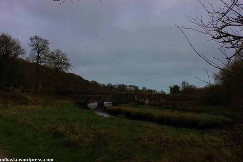 Tintern Abbey (4)