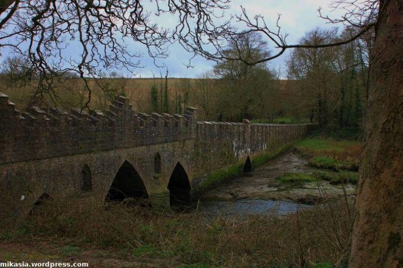 Tintern Abbey (5)