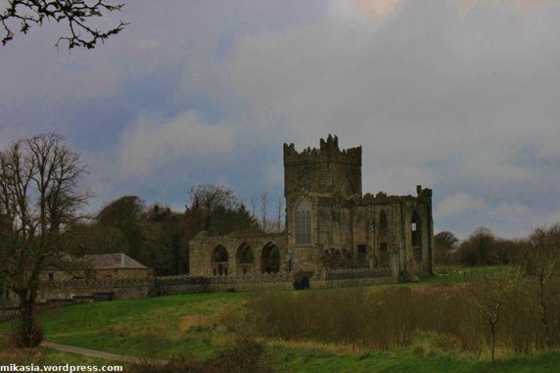 Tintern Abbey (6)