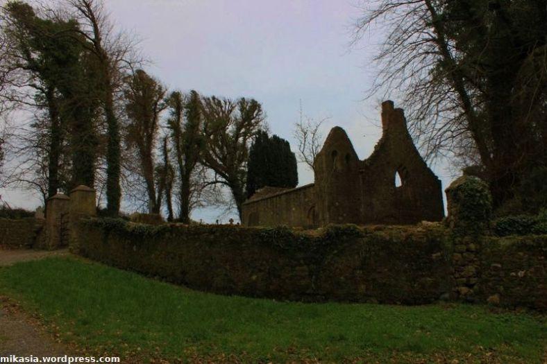 Tintern Abbey (9)