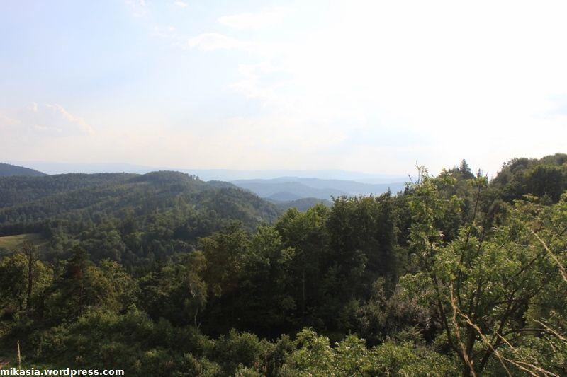Srebrna Góra (3)