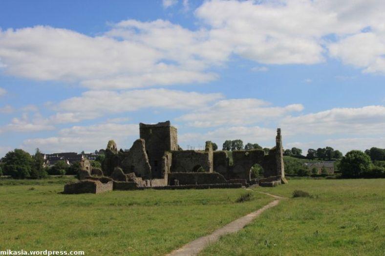Hore Abbey (1)