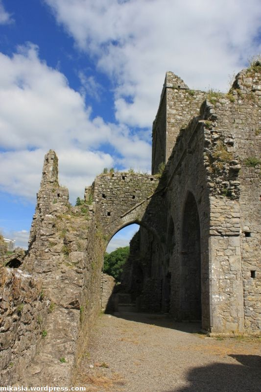 Hore Abbey (4)