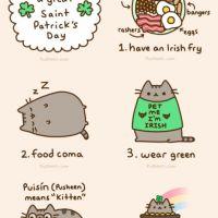 17 marca w Irlandii