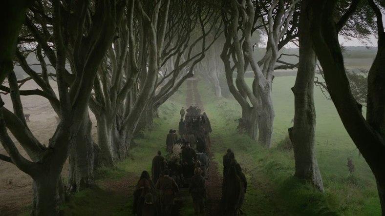 the-dark-hedges-tree-tunnel-15