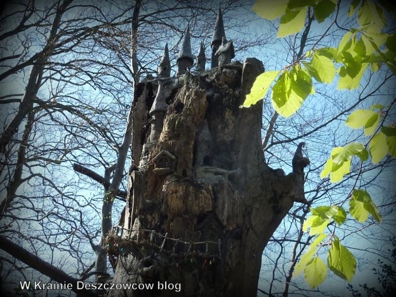Fairy Tree Marley park (10)
