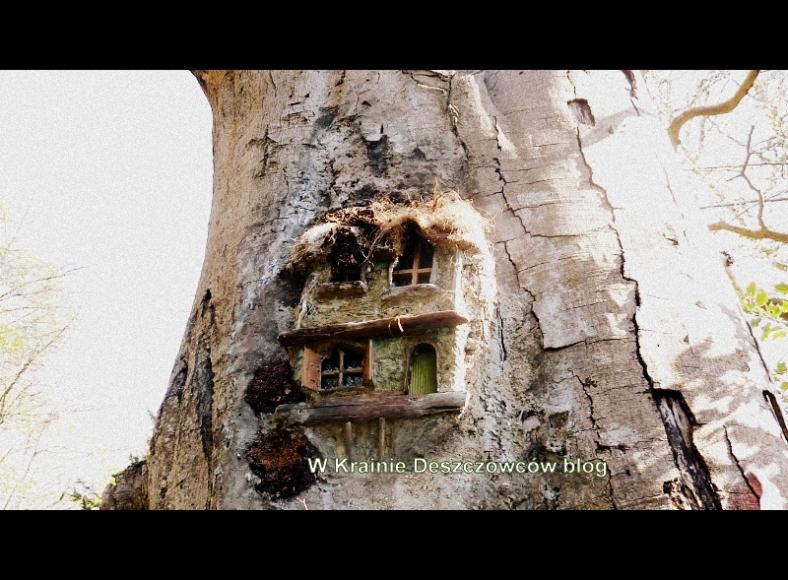 Fairy Tree Marley park (2)