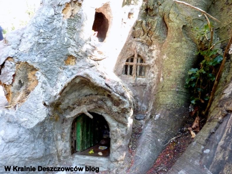 Fairy Tree Marley park (3)