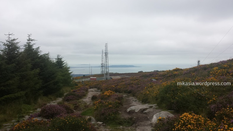 Ticknock, Dublin Mountians , Fairy Castle Loop, góry, spacer