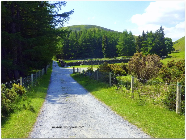 Luggala, Wicklow (12)