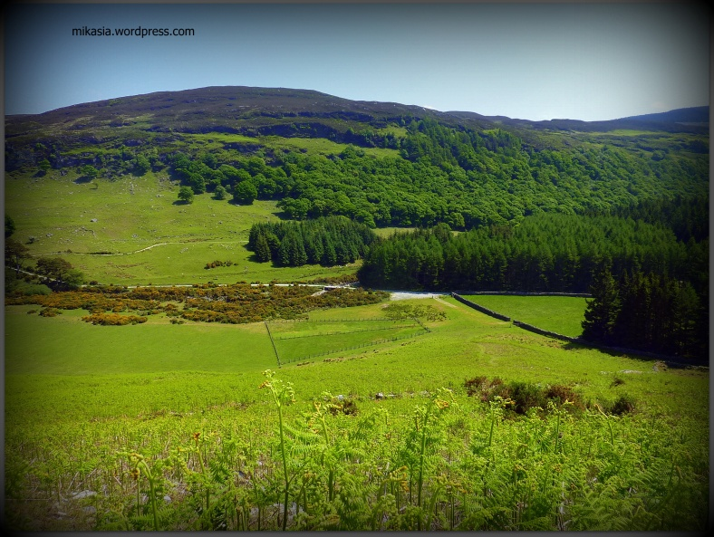 Luggala, Wicklow (14)