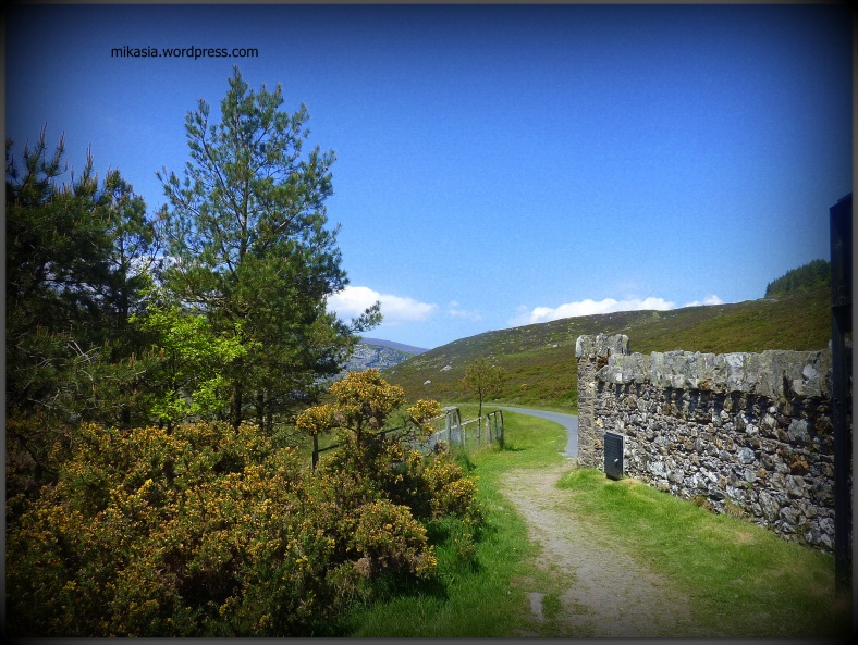 Luggala, Wicklow (3)