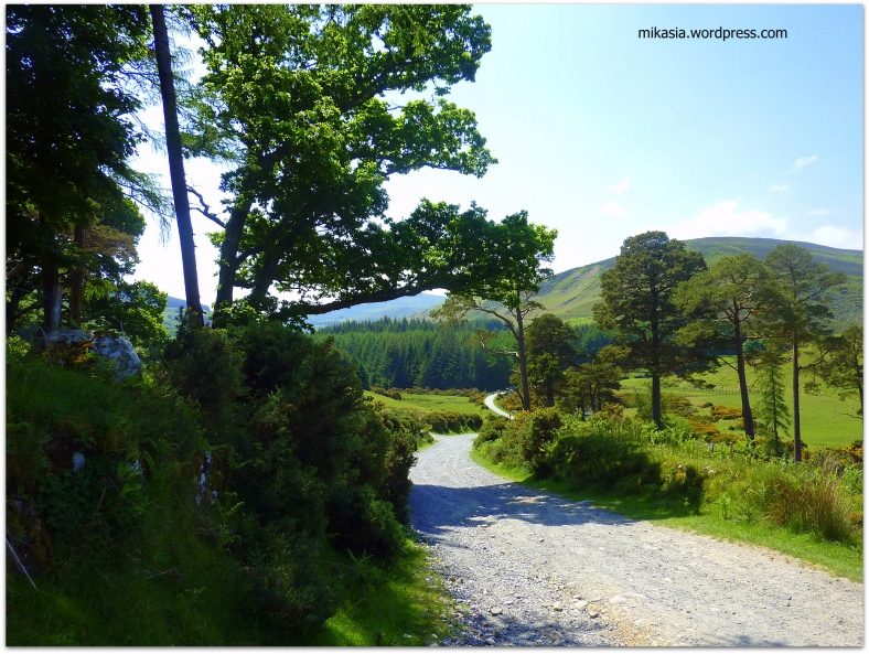 Luggala, Wicklow (8)