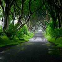 Atrakcje hrabstwa Antrim