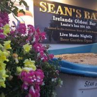 8 najstarszych ciekawostek o Irlandii